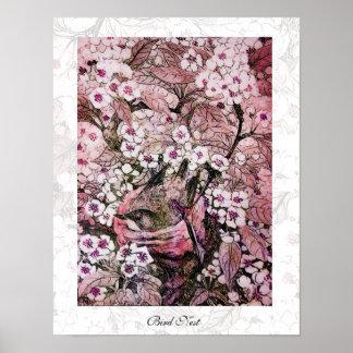 JERARQUÍA del PÁJARO, rosa rojo blanco Poster