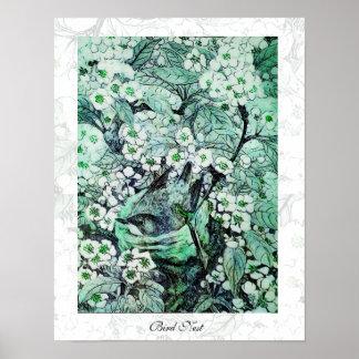 JERARQUÍA del PÁJARO, verde blanco Póster