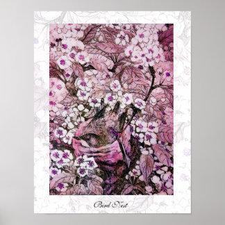JERARQUÍA del PÁJARO, violeta rosada roja blanca Póster