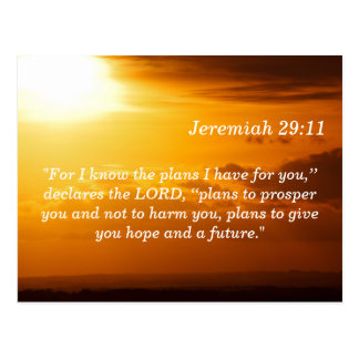 Jeremiah 29 tarjeta de memoria de la escritura de