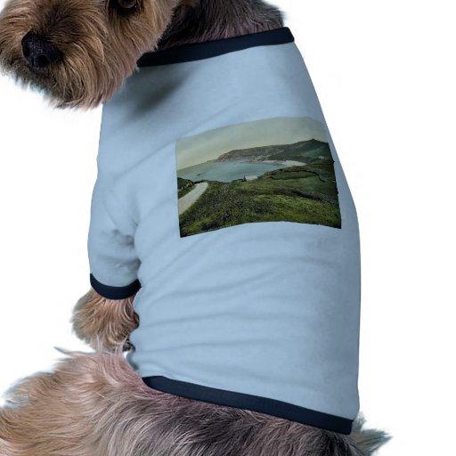 Jersey, bahía de Bonne Nuit, Islas del Canal, Ingl Ropa Para Mascota
