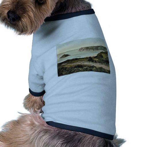 Jersey, bahía de Portelet, II, Islas del Canal, In Camisa De Mascota
