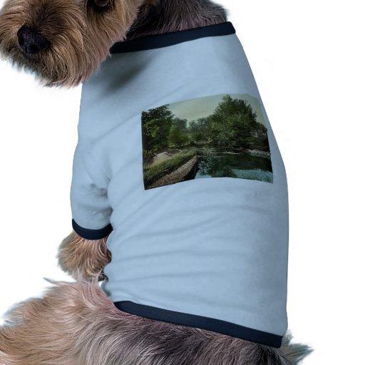 Jersey, Valley de Vaux, Islas del Canal, Inglaterr Camisetas De Perrito