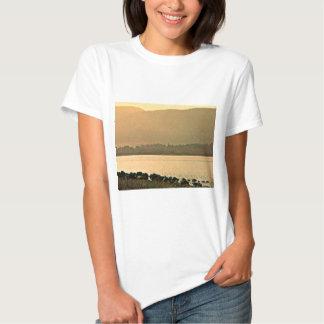 jGibney del arte 37319a2 de las montañas de Camiseta