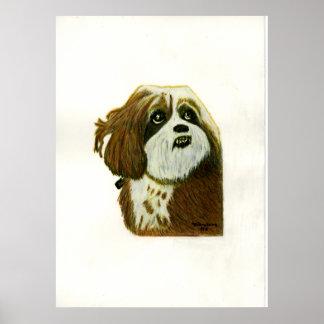 jGibney del perro de Murphy 1 El MUSEO Zazzle Póster