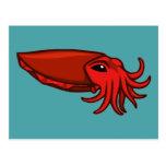 Jibias rojas de la natación