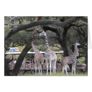 Jirafa 3 en el safari felicitación