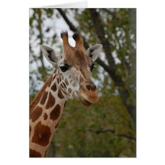 Jirafa en hábitat natural tarjeta de felicitación