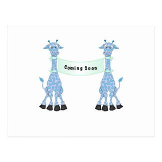 Jirafas azules que vienen pronto postal
