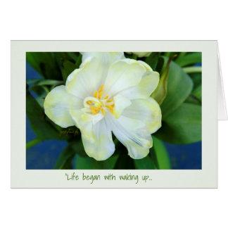 Jjhelene blanco de la tarjeta de felicitación del