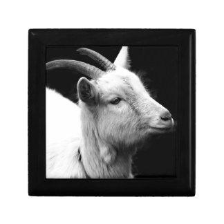 Joyero cabra