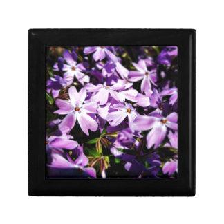 Joyero El remiendo púrpura de la flor