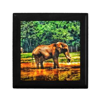 Joyero elefante fullsizeoutput_1104
