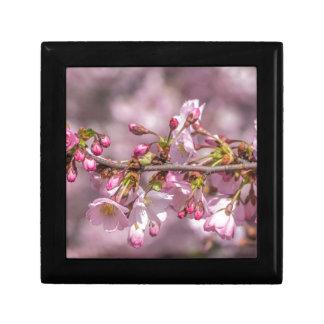 Joyero Flores de cerezo