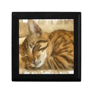 Joyero Mentira dejada de los gatos el dormir
