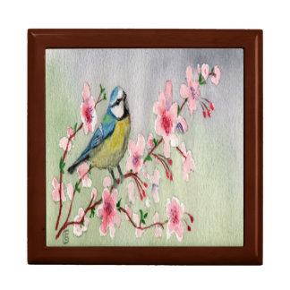 Joyero Pájaro hermoso del Tit azul en árbol de la flor de