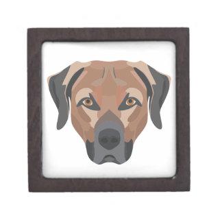 Joyero Perro Brown Labrador del ilustracion