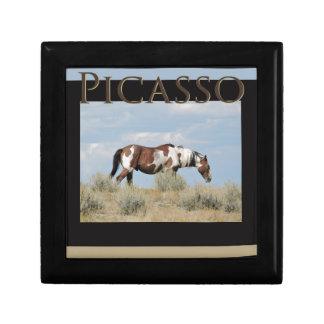 Joyero Picasso, semental del lavabo de la arena, Colorado