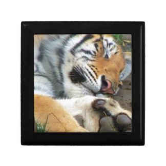 Joyero Tigre el dormir