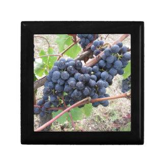 Joyero Uvas rojas en la vid con las hojas verdes