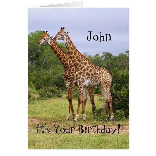 """Juan """"va"""" tarjeta salvaje de las jirafas del feliz"""