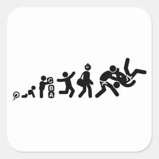 Judo Calcomanía Cuadradas
