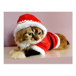 Juego de Santa del gato del gatito de las Felices Postal
