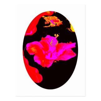 Juego Hybiscus 3 del arte los regalos de Zazzle Tarjetas Postales
