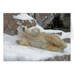 Juego polar tarjetas