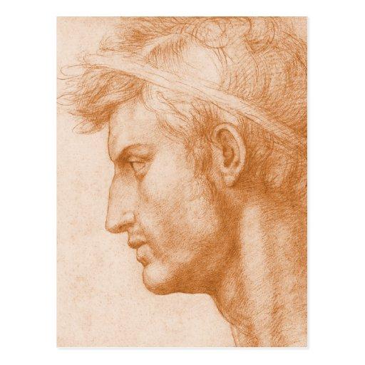 Julio César de Andrea del Sarto Postales