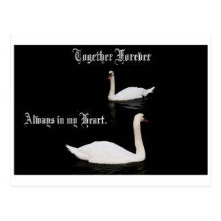 Junto para siempre cisnes postal