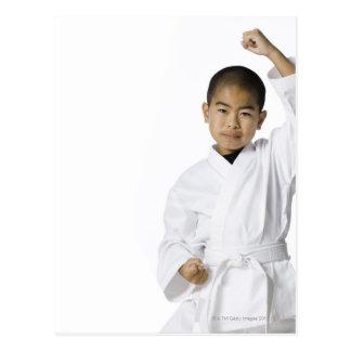 juventud que practica los artes marciales 3 postal