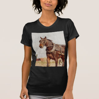 Kalona, caballo de Iowa Amish y cochecillo Camiseta