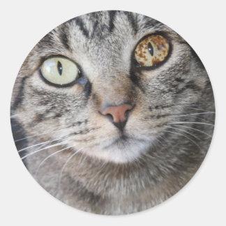 kiki-ojos pegatina redonda