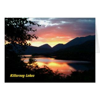 Killarney Tarjeta