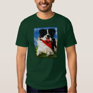 Kinzee - camisetas del border collie