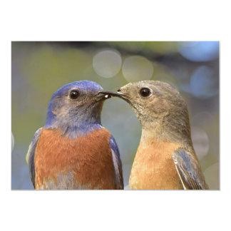 Kissy hace frente invitación 12,7 x 17,8 cm