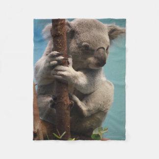 Koala adorable que se sostiene sobre la manta del