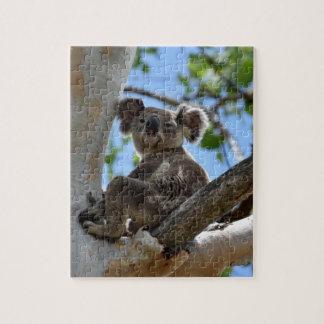 KOALA EN EL ÁRBOL QUEENSLAND RURAL AUSTRALIA PUZZLE