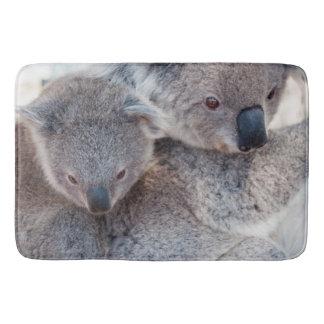 Koalas grises mullidas lindas