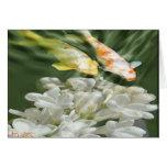 """""""Koi con las flores blancas """" Tarjeta"""