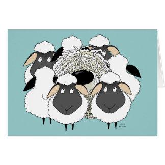 ¡Komondor - oveja perdida! Tarjeta De Felicitación