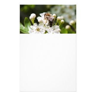La abeja recoge el polen folleto 14 x 21,6 cm
