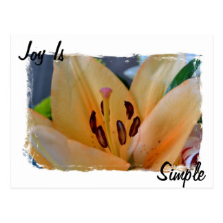 La alegría es simple tarjeta postal
