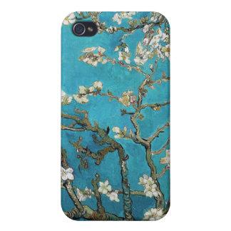 La almendra ramifica en la floración, San Remy, iPhone 4 Protector