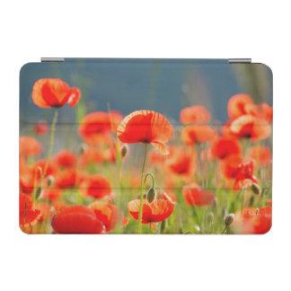 La amapola roja de las amapolas florece el cielo cover de iPad mini