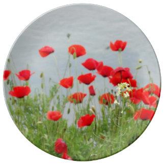 La amapola roja florece la placa decorativa de la plato de porcelana