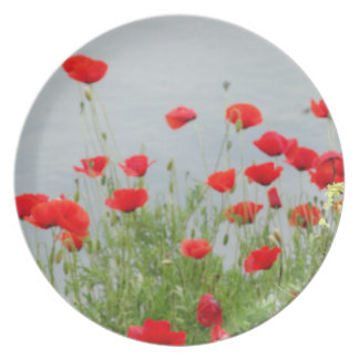 La amapola roja florece la placa decorativa plato de cena