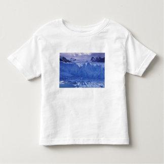 La Argentina, Patagonia, Parque Nacional los Camisetas
