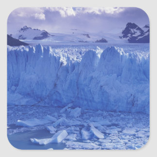 La Argentina, Patagonia, Parque Nacional los Calcomanía Cuadradas Personalizadas